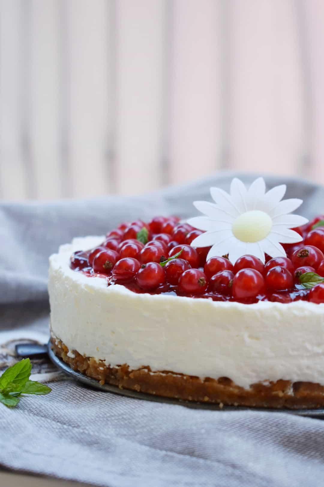 Cheesecake ribes
